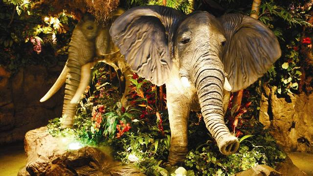 Is Rainforest Cafe Open On Holidays