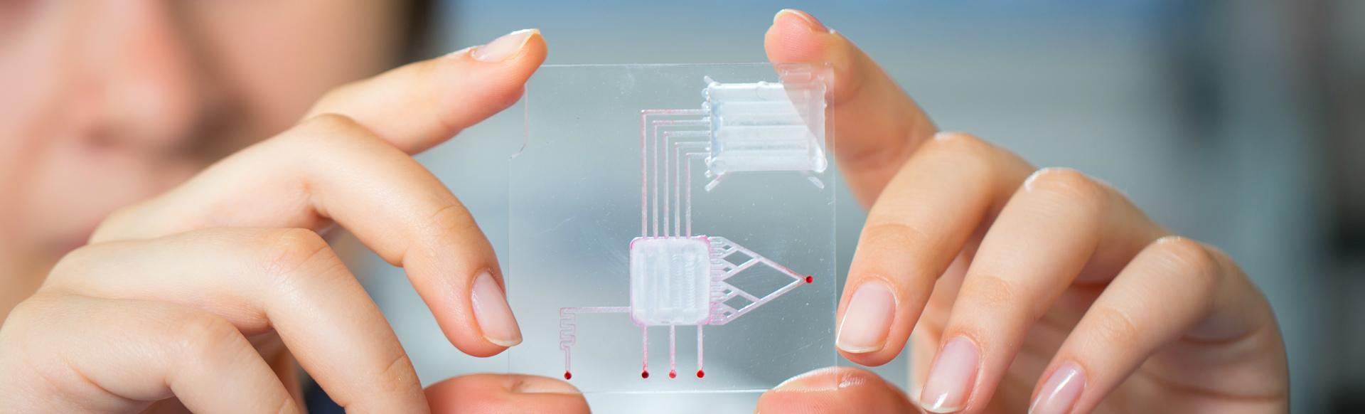 Technology computer chip