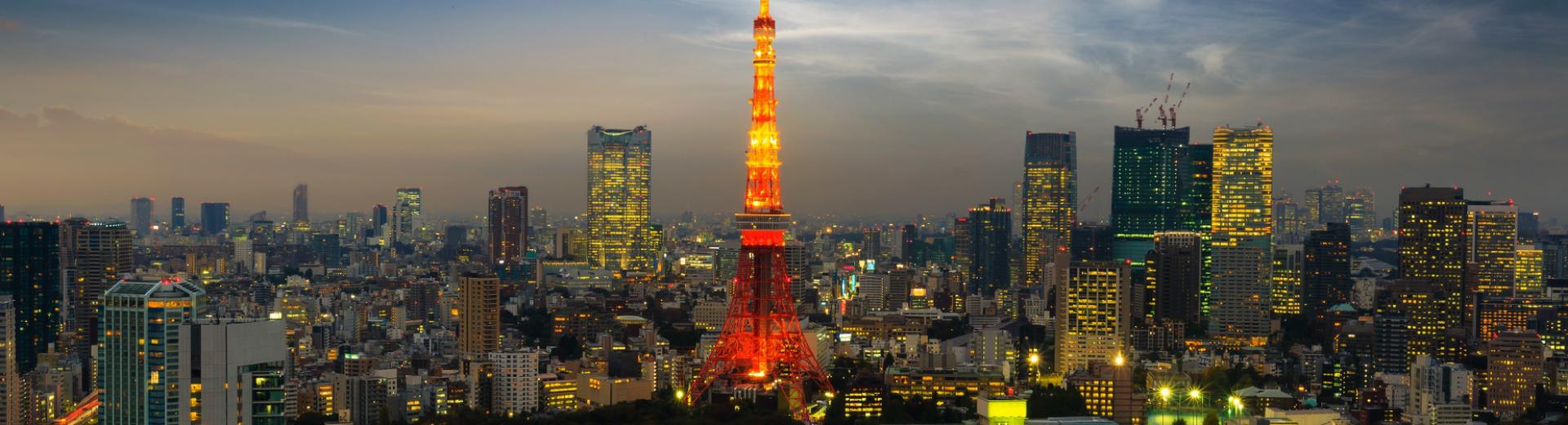 Tokyo skyline. Copyright: Shutterstock / Krunja