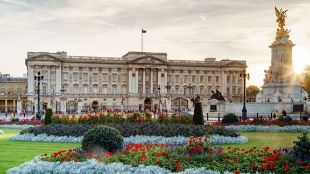 Buckingham Palace with its green garden and golden statue in the front.