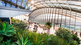 Sky Garden top level, with green plants in the front and a beautiful view over the city.