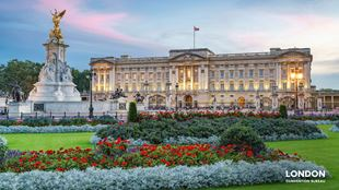 Buckingham Palace lit up behind the green garden area with red and purple flowers blooming.