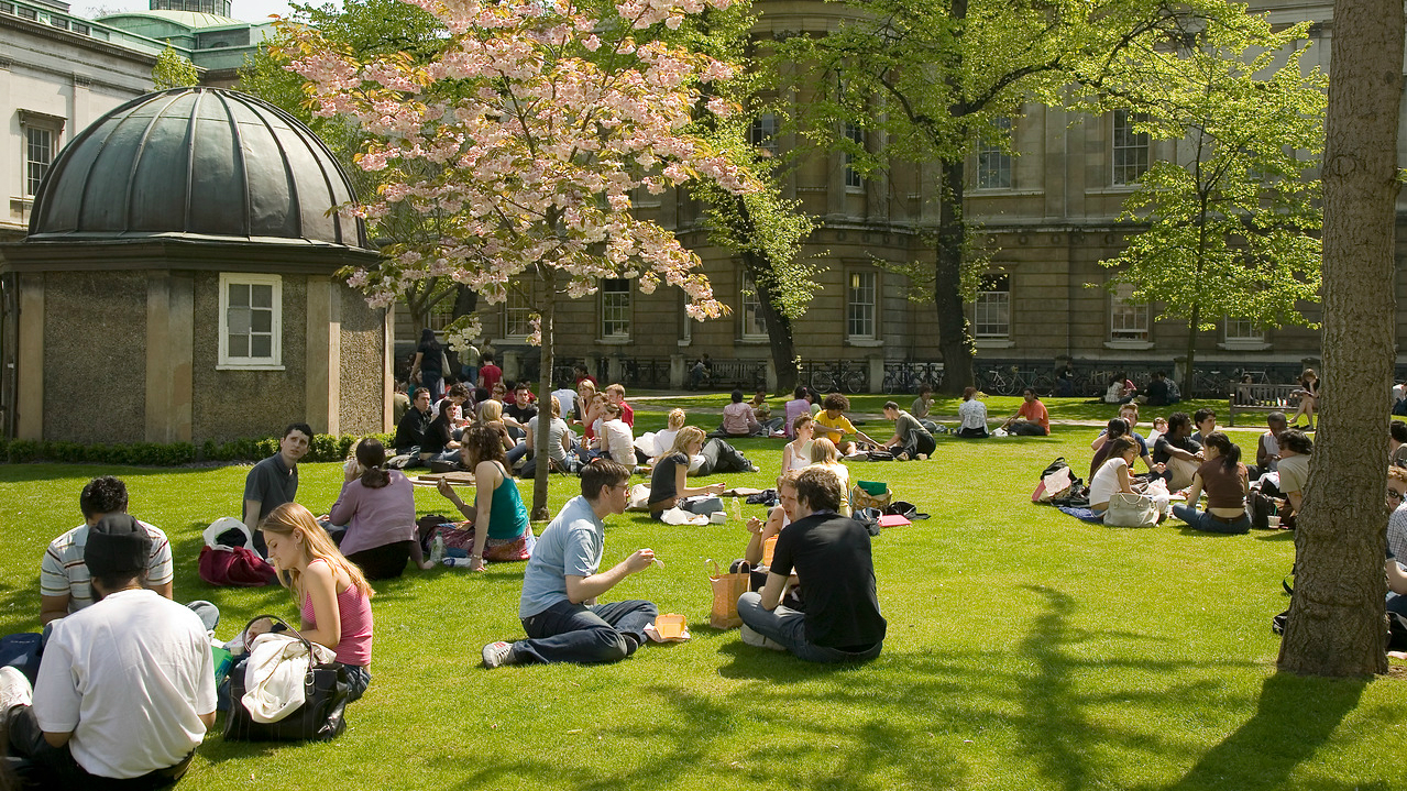 A group of student is sitting on the field outside of UCL in London on a sunny day.