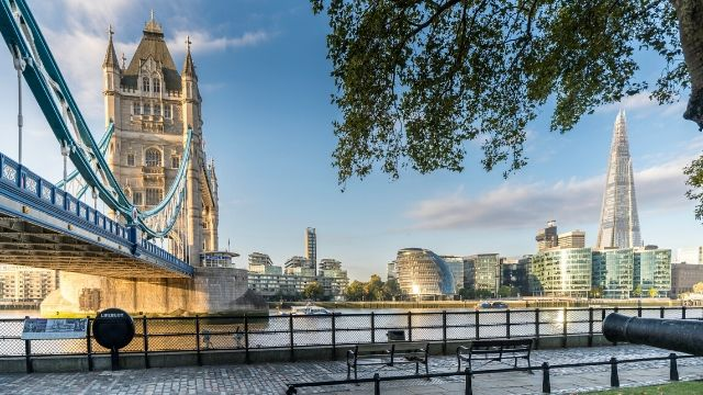 Early morning view of the Thames with Tower Bridge and a tree in the foreground and the Shard, City Hall and blue sky in the background.