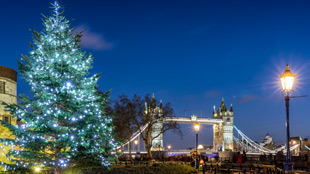 A lit Christmas tree in front of the Tower of London, with Tower Bridge in the background. Taken at dusk.