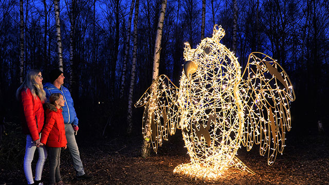 A family of three looking at an illuminated owl on the light trail after-dark
