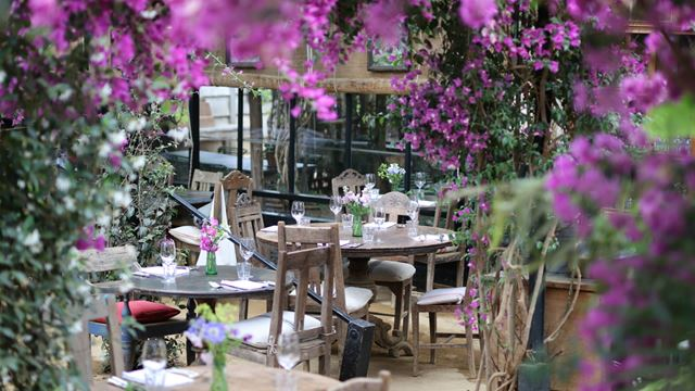 Petersham Nurseries flower filled garden restaurant