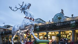 A statue of a white stag, decorated in Christmas lights, stands infront of an illuminated Covent Garden Market building.