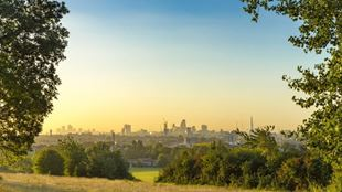 The London skyline on a sunny day framed by trees and grassy spaces on Hampstead Heath.