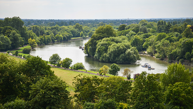 Looking down over the Thames from Richmond Hill, with an island in the middle of the river covered in trees, and trees and meadows to the side of the river.