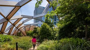 A woman in a pink top walks through a green space in front of Canary Wharf.