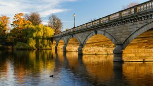 Autumn sun shines over Hyde Park