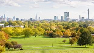 Panorama of London with fields of grass and trees in sunshine.