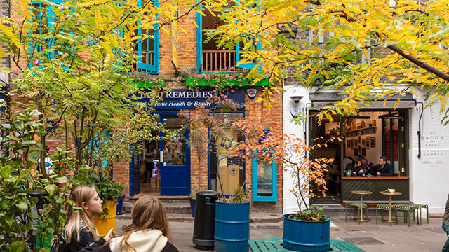 Two ladies sit on a bench in the courtyard at Neal's Yard, with trees surrounding them and the colourful blue window frames of shops in the background.