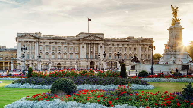The façade of Buckingham Palace, with flower beds in the foreground, at dusk