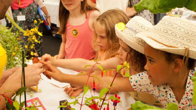 Children looking at and touching colourful plants and flowers at Kew Gardens