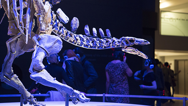 The skeleton of a dinosaur is lit in a blue light, in a darkened room, as people chat in the background during one of the 2019 Natural History Museum Lates events.