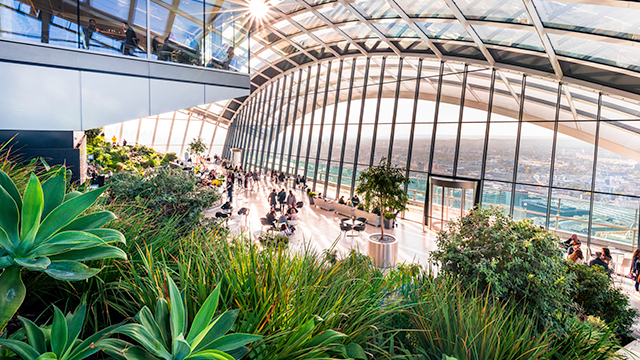 Looking out from behind foliage at the view from a large arching window at Sky Garden.