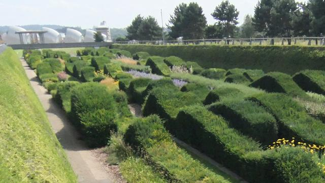 The sunken garden at Thames Barrier Park. Image courtesy of Greater London Authority.