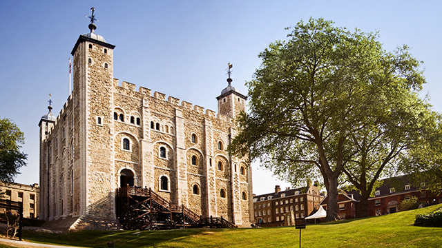 The Tower of London, on a clear, bright day, with grass in the foreground and a large tree to the right.