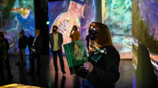 A lady, wearing a face covering, holds an exhibition catalogue while  staring up at artwork. More of Van Gogh's works are projected onto the walls behind.