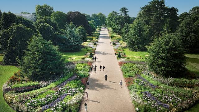 A high-angle view of people walking down the Great Broad Walk Borders in Kew Gardens on a sunny day.