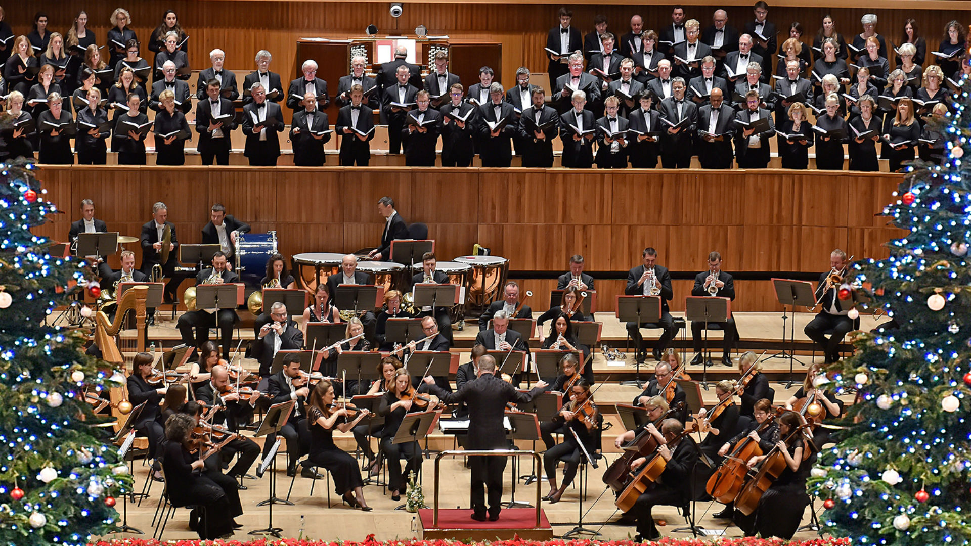The Philharmonia Orchestra performing a Christmas concert, with two Christmas trees on the left and right hand-side of the photo.