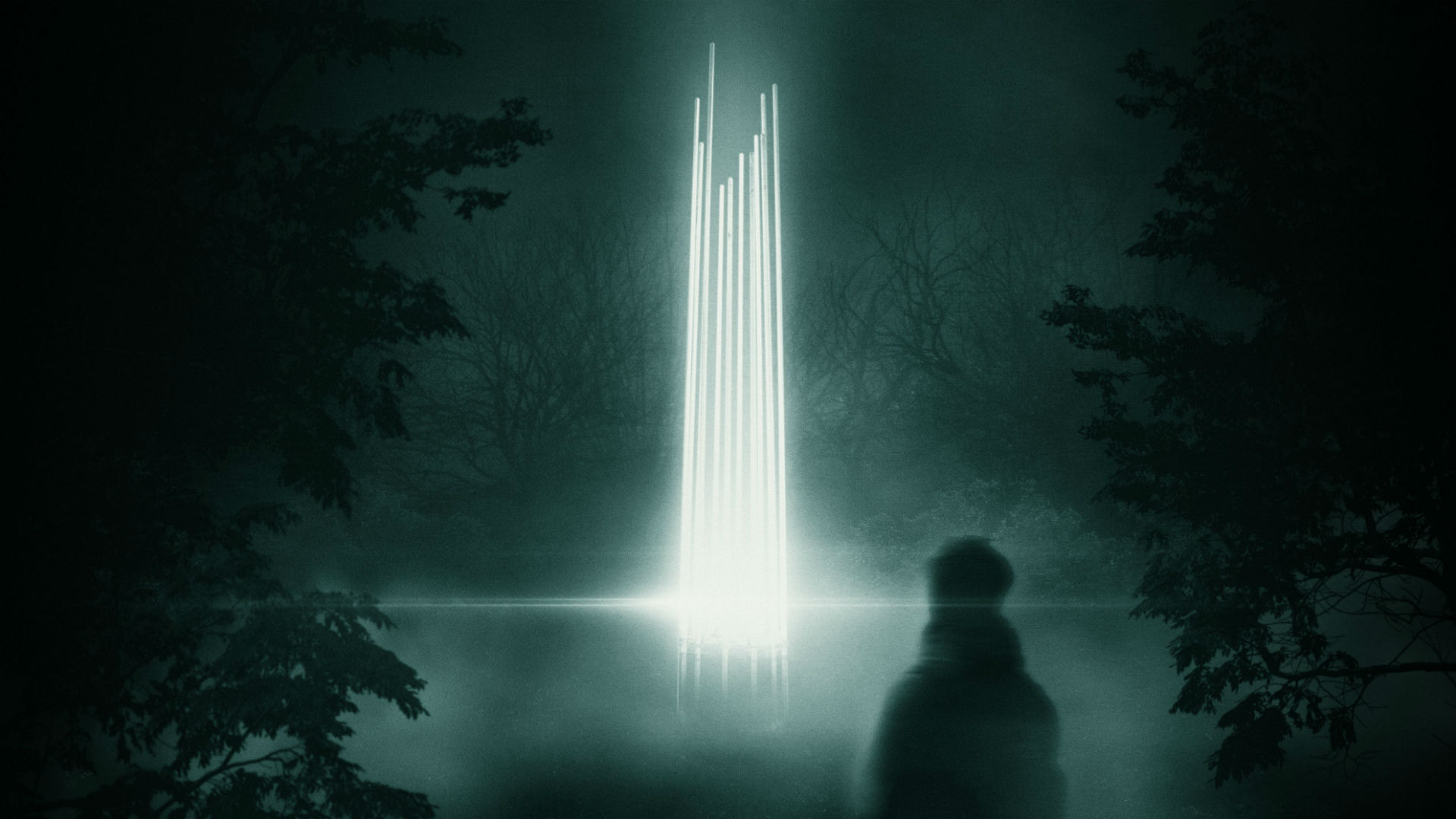 A linear light beam in the middle of the lake in a dark forest, as part of Forest Uprising.