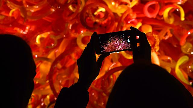 A photo of a person taking a picture of Chihuly sculptures with their phone.