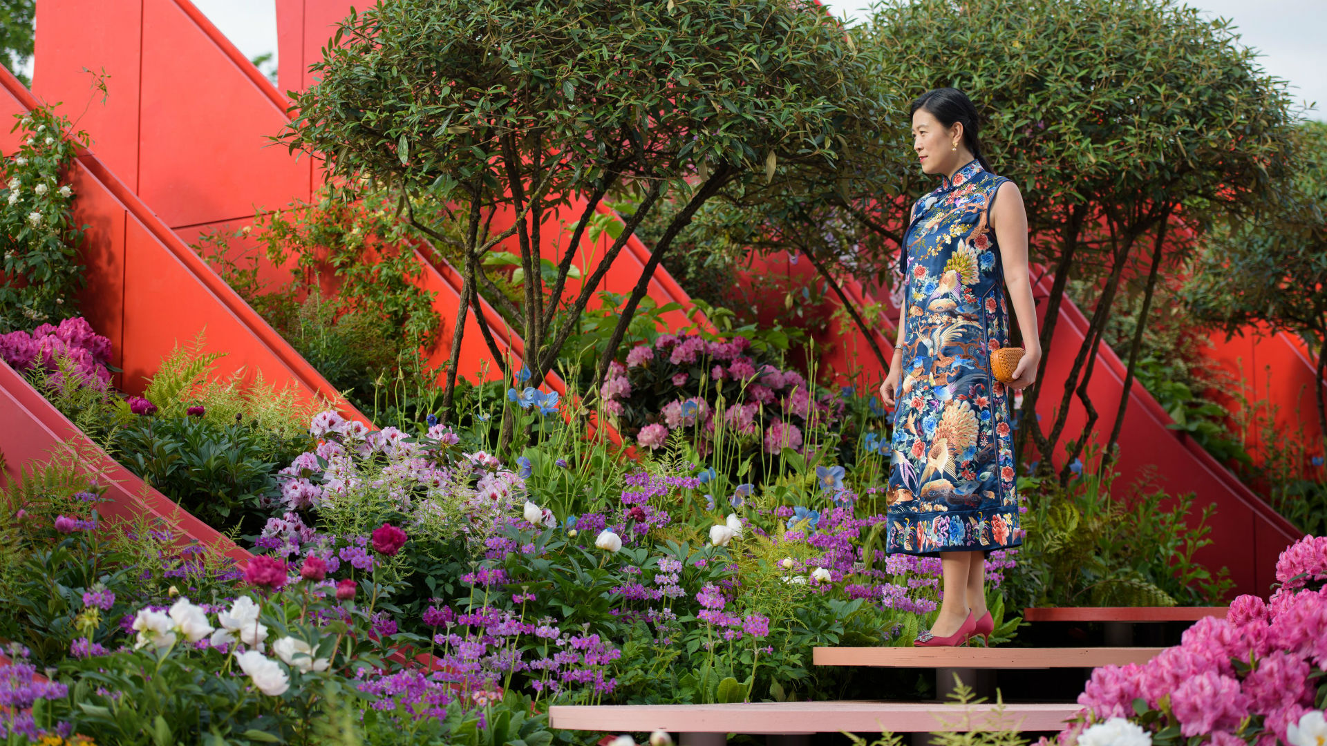An invited guest steps onto The Silk Road Garden at RHS Chelsea Flower Show 2017.