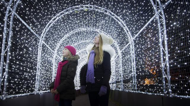 Two girls look up as they walk through a tunnel of white lights at Christmas at Kew.