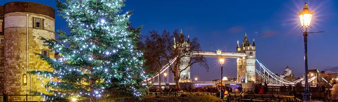 An illuminated Christmas tree at night, in front of the Tower of London and Tower Bridge.