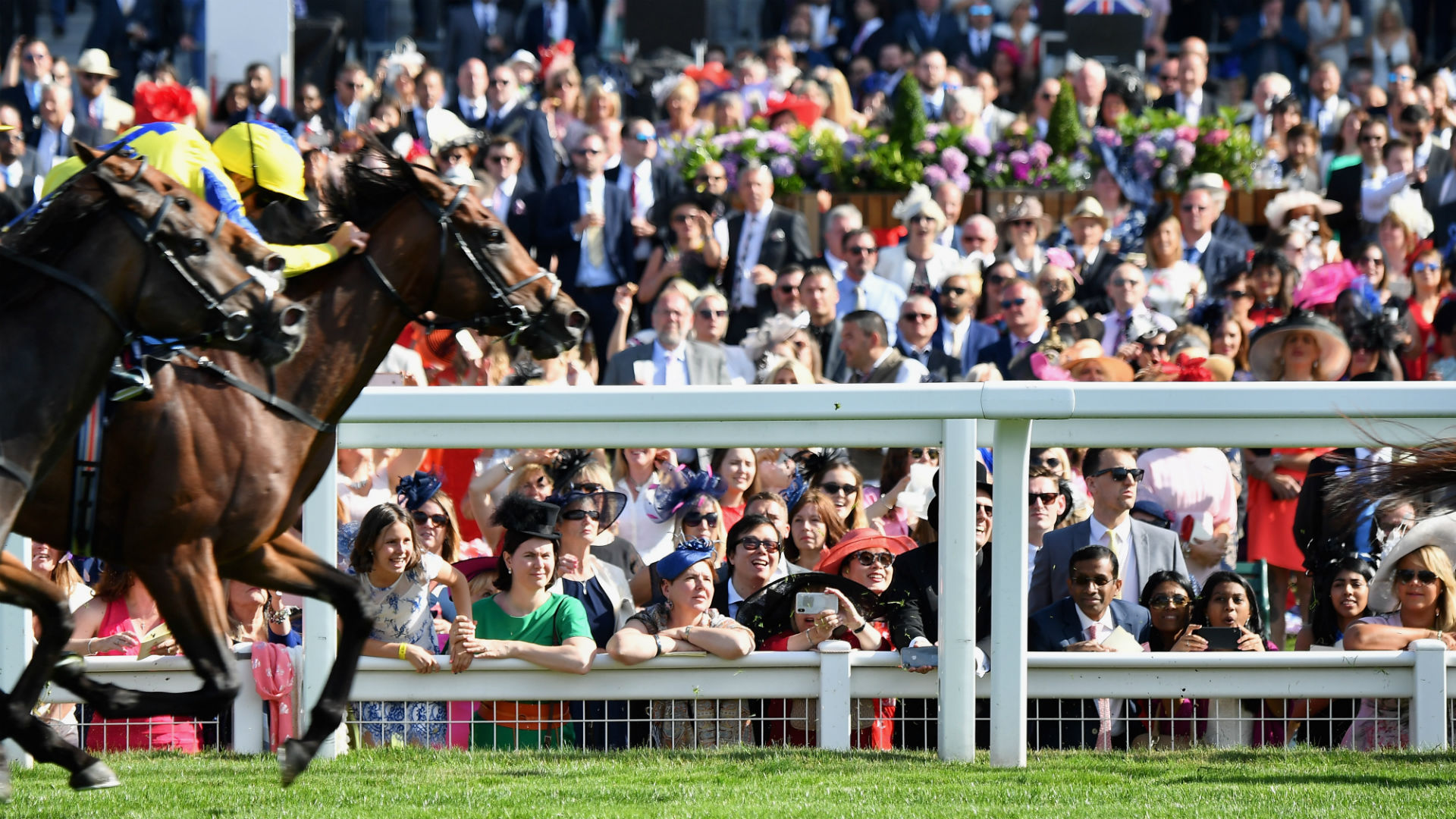Image result for royal ascot 2019