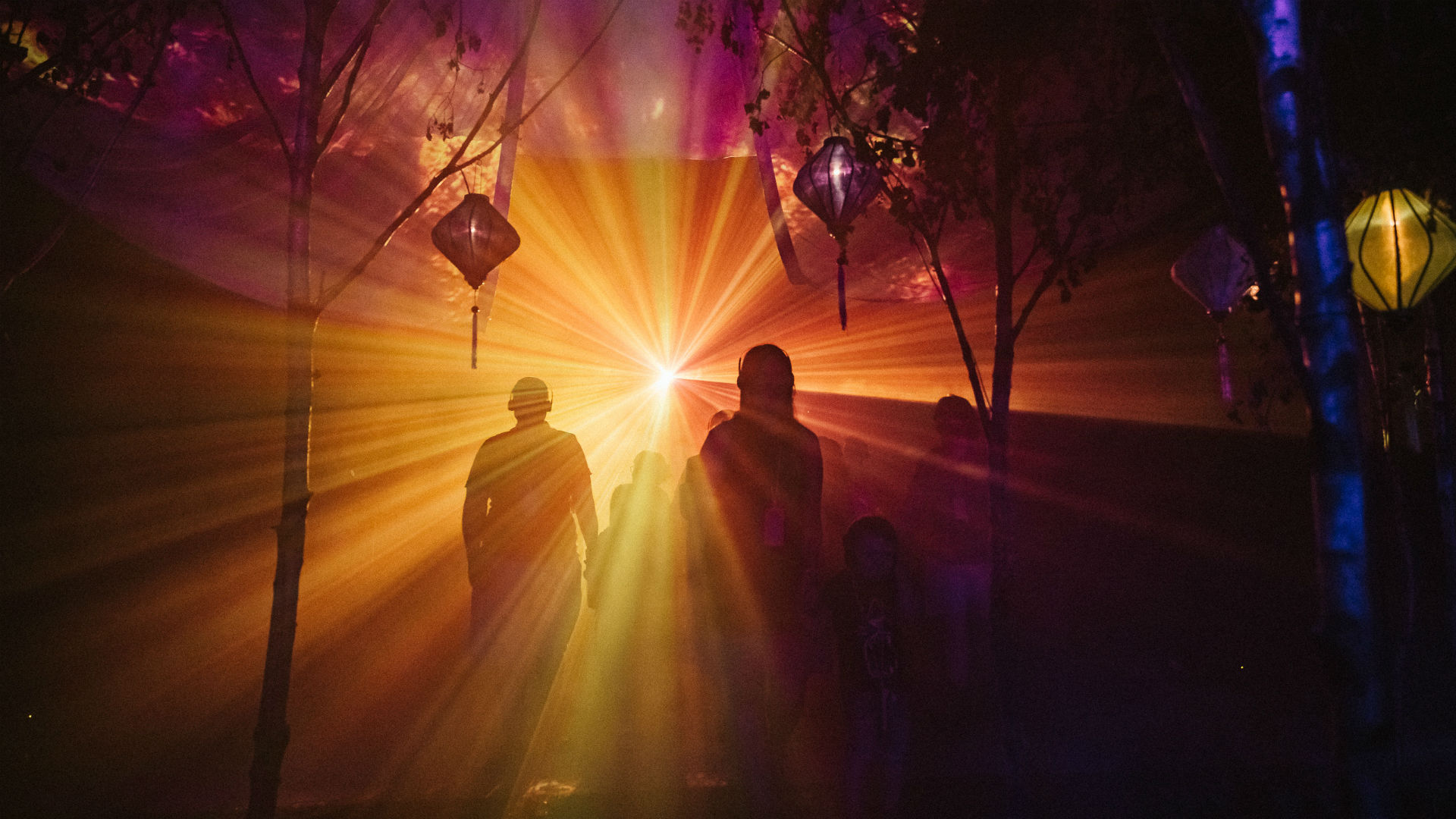 Two people walking into golden light and trees.