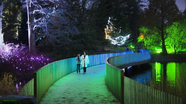 Christmas At Kew Christmas Visitlondon Com