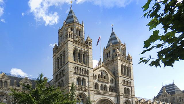 Natural History Museum London Admission