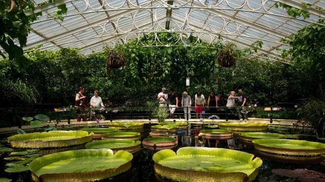 Resultado de imagen de royal botanic garden kew england