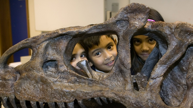Best London museums for kids