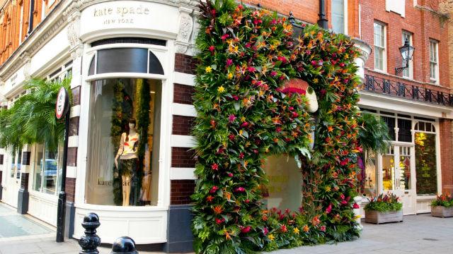 Rhs chelsea flower show 2017 for Chelsea 2017 show gardens
