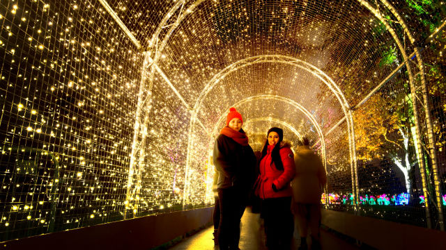 christmas in london things to do