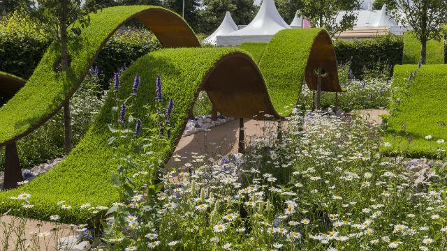 rhs hampton court palace flower show 2017. Black Bedroom Furniture Sets. Home Design Ideas